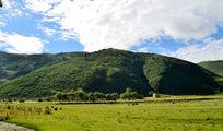 青山和绿色的草甸