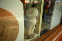 透过玻璃看世界的小猫
