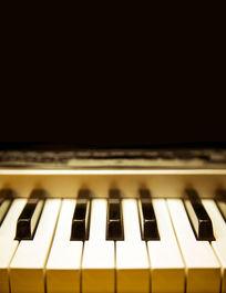 钢琴的键盘