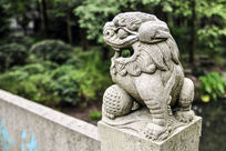 公园里的石狮子