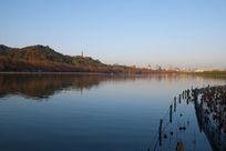 杭州西湖的秋天
