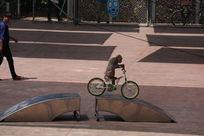 猴子骑自行车