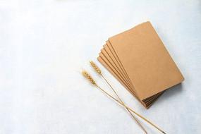 牛皮纸日记本和金色麦穗
