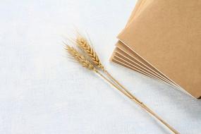 日记本和金色麦穗