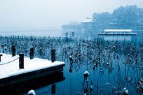 西湖的冬天