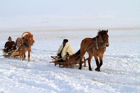 乘坐马爬犁行驶在雪原上