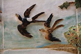 飞翔的鸟类