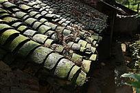 阳光下农村的长满青苔的瓦房屋顶