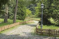 青岛中山公园风景