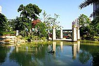 园林水池风景
