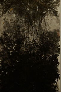 水墨菊花背景
