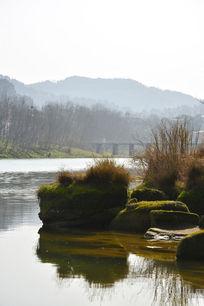 河边长草的石头