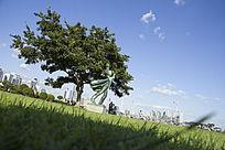 青岛音乐广场风景