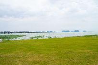 苏州湾太湖边草地