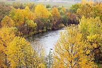 森林河之秋
