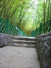 竹林里的小路背景图