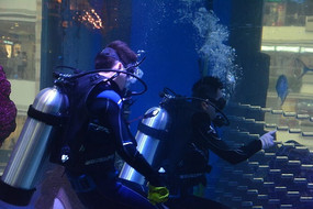 水中清洁的潜水员