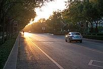 金色夕阳洒在道路上