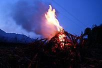 火焰高升燃烧的玉米秆