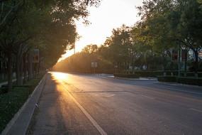 夕阳金色阳光洒落在道路上