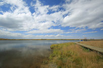 康乐草原之天鹅湖
