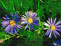 电脑油画《蓝色的花》
