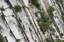 华山岩石植被肌理背景素材