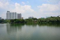广州流花湖公园的风景