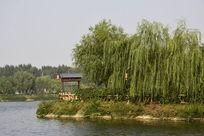 西安汉城湖绿树环绕的凉亭