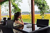 静坐着看着菊花的户外休闲时光