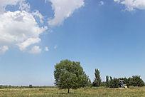 田野上的油井蓝天白云
