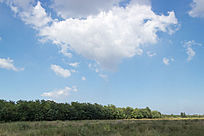 田园上空的蓝天白云