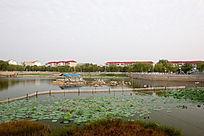 公园湖泊建筑
