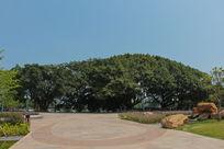 流花湖中心广场