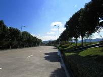 大榭岛马路