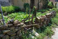 阳光下的篱笆