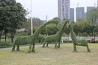长颈鹿植被图片