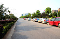 城市公路风景实景