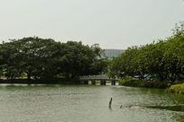 流花湖园林景观西侧