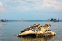 泰国海边的海龟雕塑