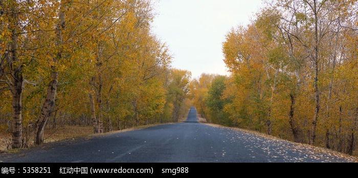 中国的66号公路张北坝上草原秋天风光图片