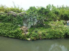 苏州园林景观一角