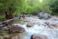 山上的溪流
