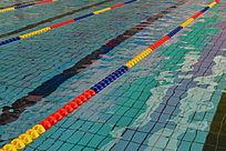 游泳赛场泳道