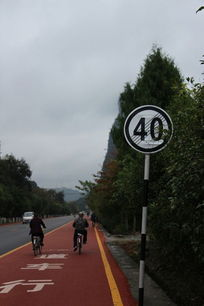 自行车道上