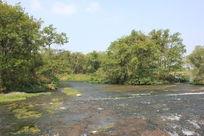 河水自然景观