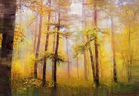 電腦油畫《秋天的森林》