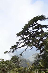 海南五指山自然风光图片