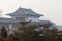 松树掩映下的唐朝风格建筑