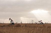 湿地油田自然生态风光